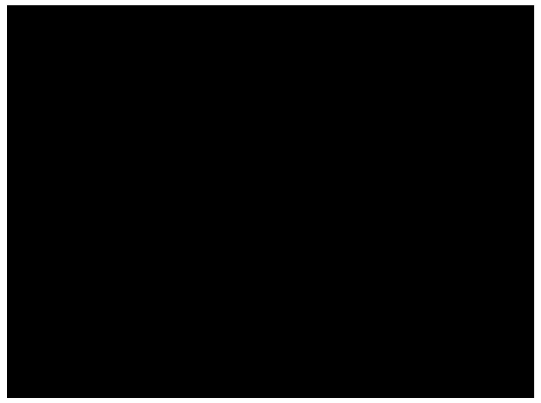 Witzel Erb Backu & Partner logo